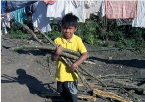 Eliseo collecting firewood